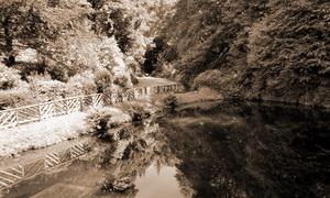 Teich von Glengoyne